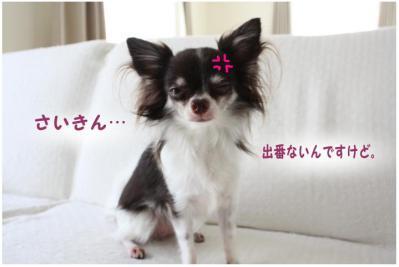 コピー (6) ~ 東京