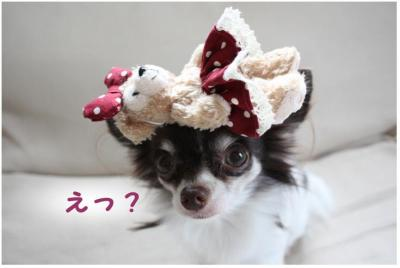 コピー (6) ~ ダッフィー