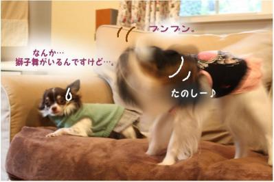 コピー (5) ~ マロむぎの森