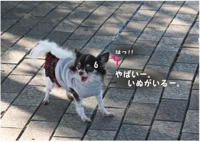 コピー (4) ~ ポートパーク