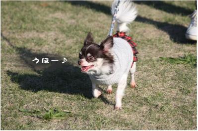コピー (2) ~ ポートパーク