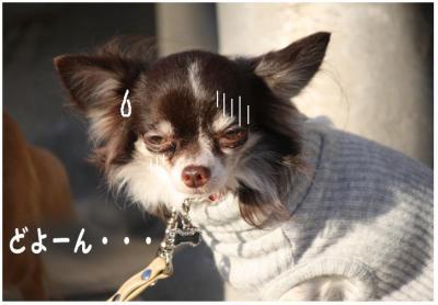 コピー (6) ~ パーチー後
