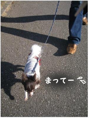 コピー (3) ~ ポート