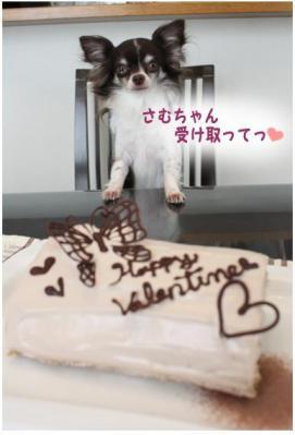 コピー (2) ~ バレンタイン