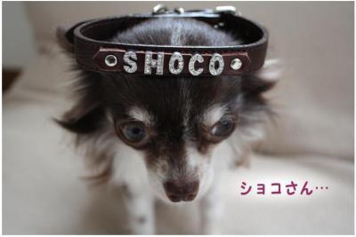 コピー (4) ~ choco