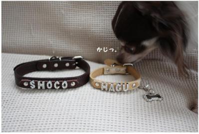 コピー (2) ~ choco