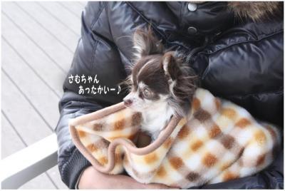 コピー (4) ~ 勝浦