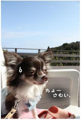 コピー (2) ~ 勝浦