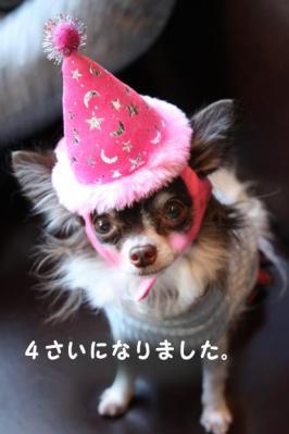 コピー (2) ~ たんじょうび