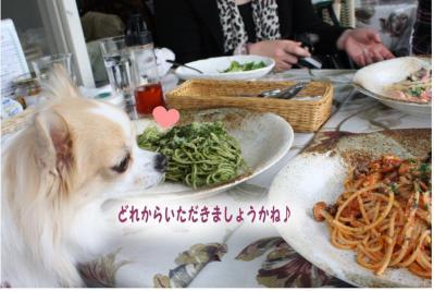 コピー (5) ~ ざおー