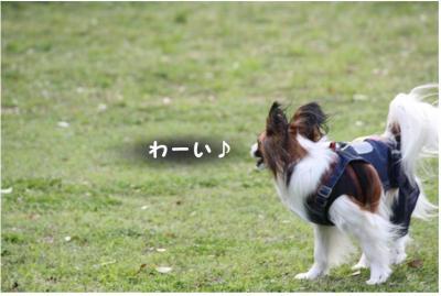 コピー ~ コピー ~ GW2011