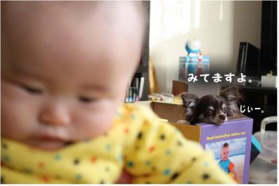 コピー (10) ~ 2011.0614