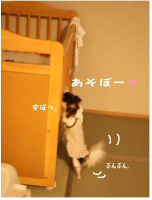 コピー (5) ~ イケメン