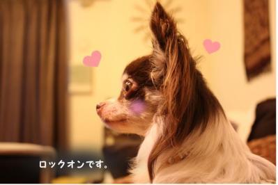 コピー (3) ~ イケメン