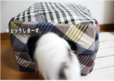 コピー (3) ~ おにゅー