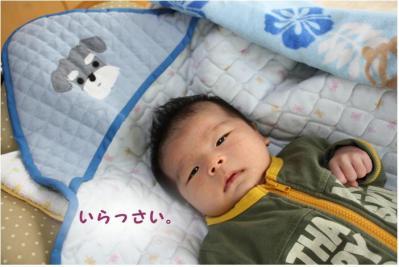 コピー (5) ~ taichi
