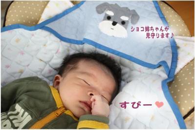 コピー (8) ~ taichi