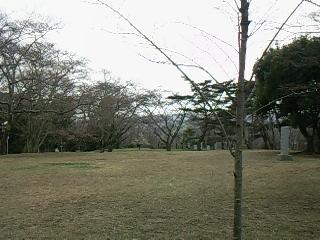 画像-0068