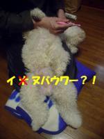 20060310032302.jpg