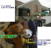 20060330143220.jpg