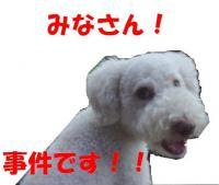 20060828211937.jpg