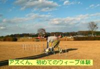 20061204215329.jpg