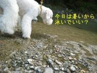 20070504151524.jpg