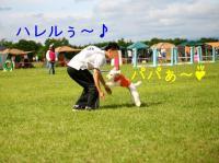 20070708170808.jpg