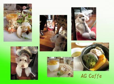 AG Caffe