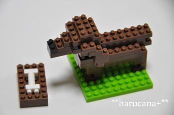 daia+002_convert_20100113000624.jpg