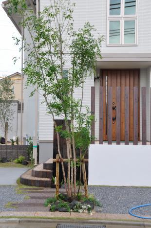 hikiwatasi+011_convert_20100831002254.jpg