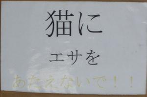 2010012302.jpg