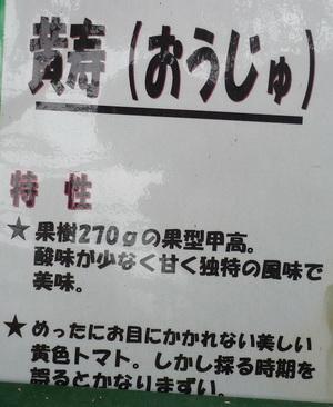 2010020908.jpg