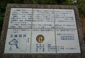 2010033001.jpg