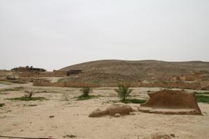 2010071002.jpg