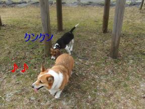 たわむれ姉弟2