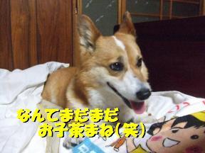 チョコ笑顔1