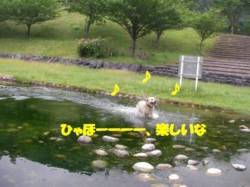 ロージーちゃん水遊び