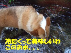 滝水チョコ