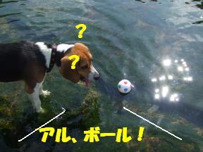 ボール流れ