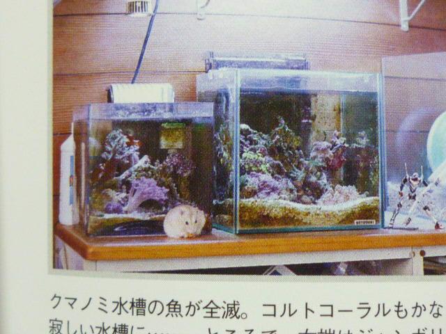 ・・魚の本ですか?