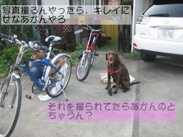 IMG_0137-1.jpg