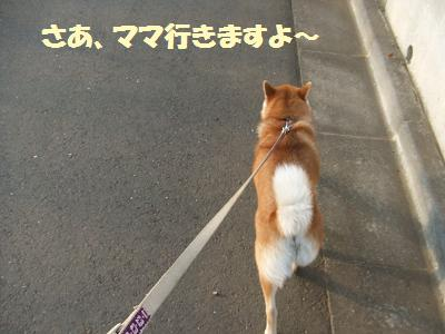 歩こう歩こう