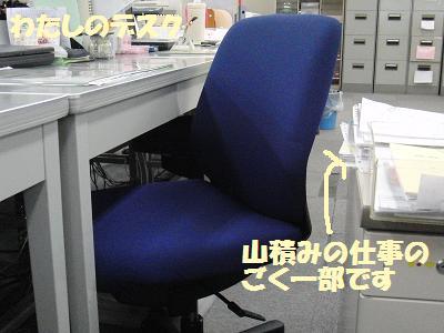 CIMG2061.jpg