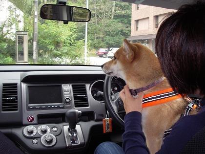 運転席だ!