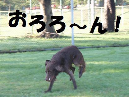 28OCT07 369abc