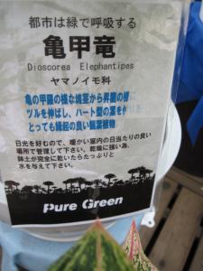 2011/07/22ブログ用 (8)