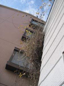 2012/01/30ブログ用 001