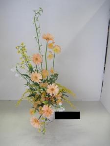 IMG_3338_20120216152834.jpg