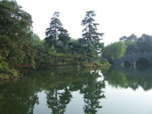 朝の西湖④